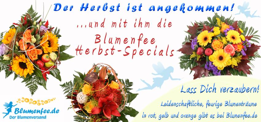 """Bestellt die Blumenfee Herbst-Specials """"Herbstpoesie"""", """"Ode an den Herbst"""" und """"Herbst-Zauber"""" ganz einfach, günstig und online."""