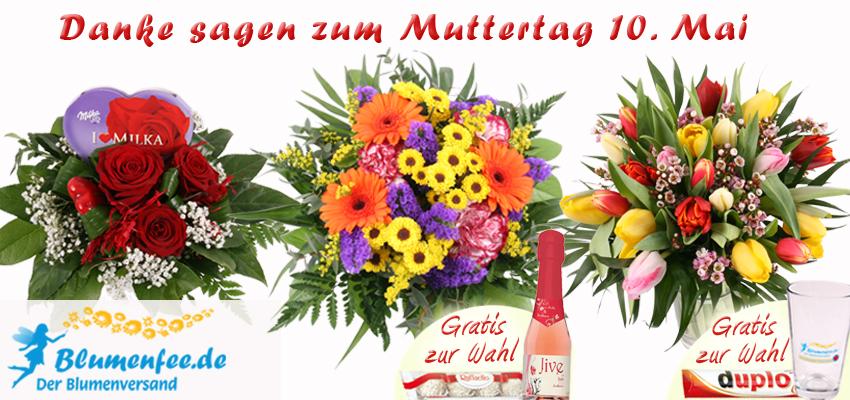 Blumenversand Blumenfee Muttertags-Blumenstrauß online