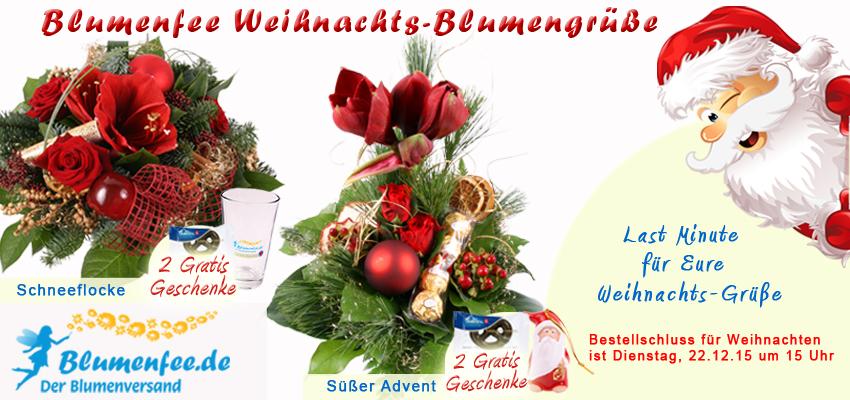 Weihnachts-Blumenstrauß bis heute 15 Uhr online bestellen