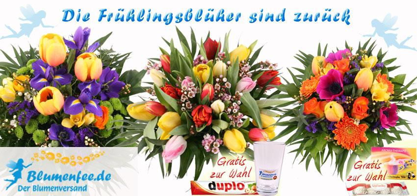 20 Bunte Tulpen mit Vaser und andere Frühlings-Sträuße sind zurück
