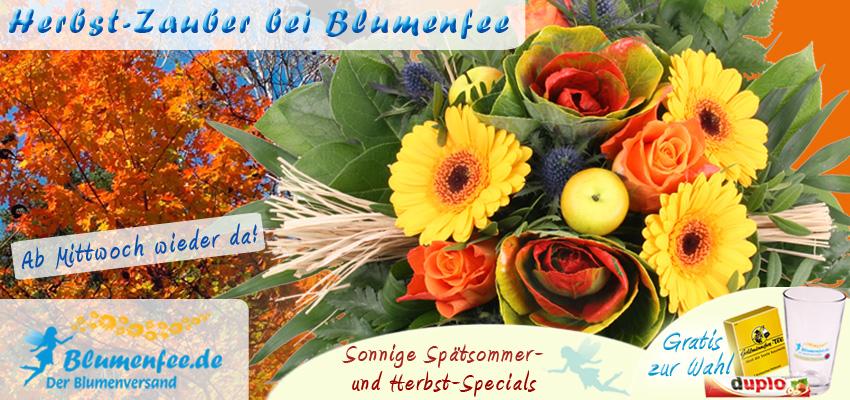 Herbst Blumen online versenden mit Blumenfee