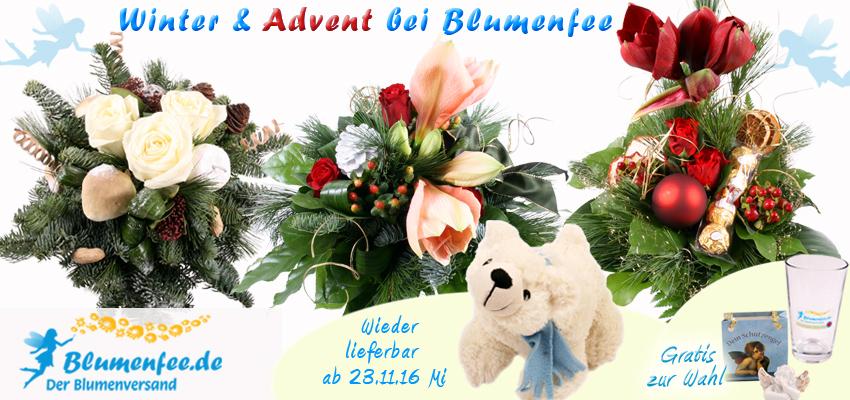 Winter und Advents Blumen online versenden