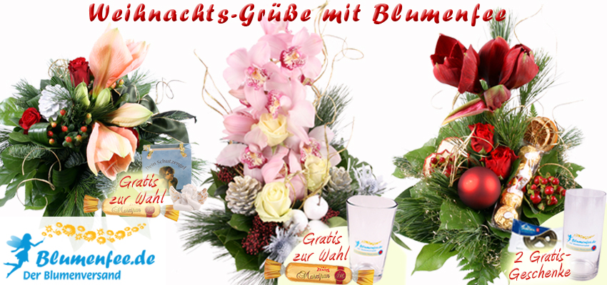 Weihnachts Blumenversand online