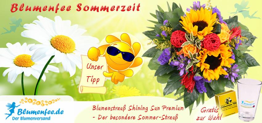 Blumenstrauß Sommer online versenden mit Blumenfee