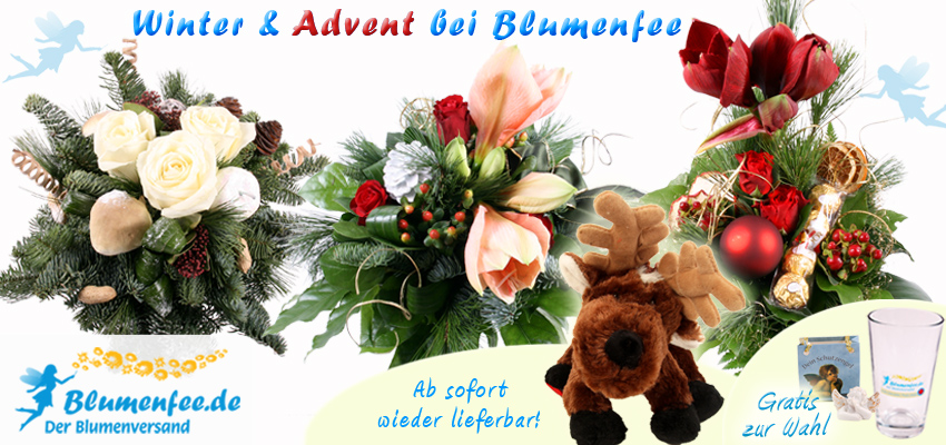 Weihnachts-Blumenversand online