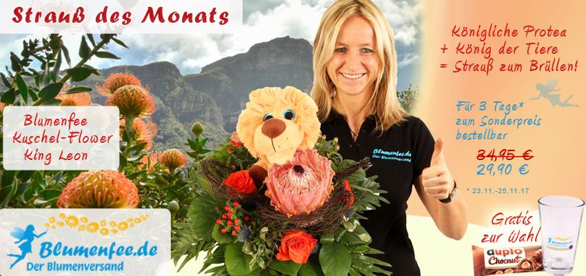 Blumenstrauß mit Protea und Kuscheltier online bestellen