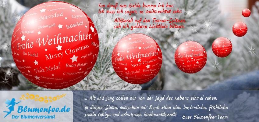 Wünsche Euch Besinnliche Weihnachten.Frohe Und Besinnliche Weihnachten Wünscht Das Blumenfee Team