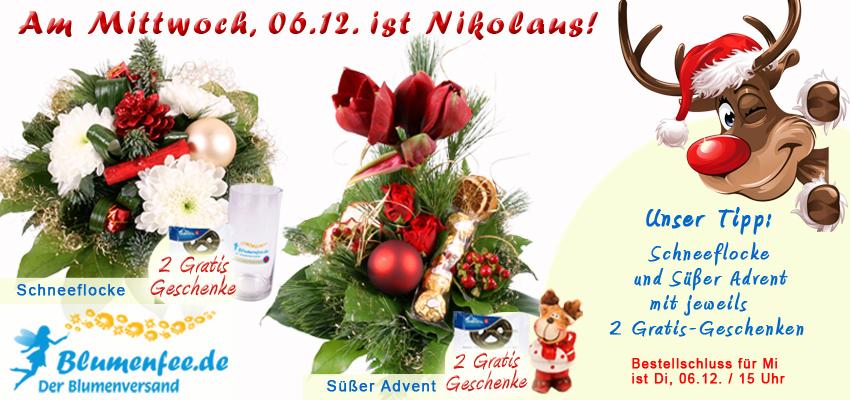 Nikolaus Blumenversand mit Gratis-Geschenken