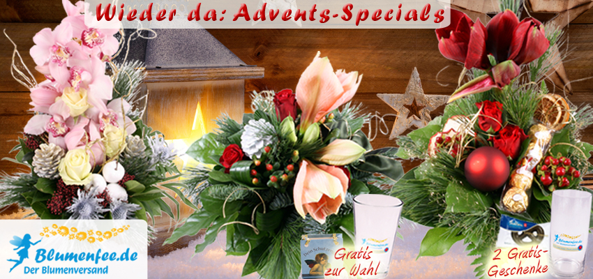 Blumenversand Advent