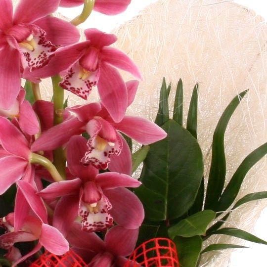 blumenstrauss orchideen herz blumen online deutschlandweit bestellen mit. Black Bedroom Furniture Sets. Home Design Ideas
