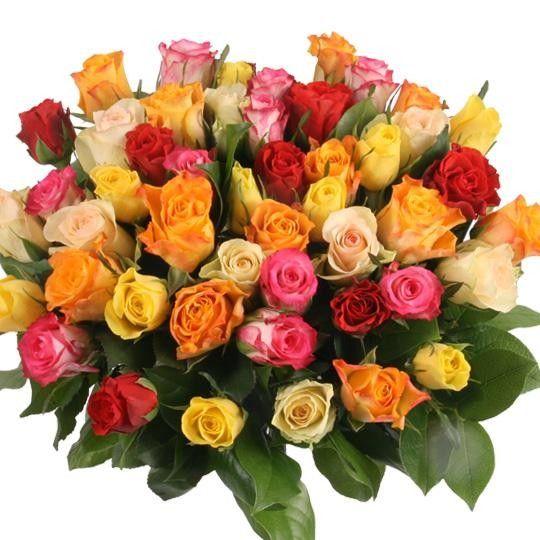 50 Rosen Im Mix Mit Gratiszugabe Ihrer Wahl Blumen Online