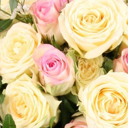 blumenstrau rosen garten premium mit 3 gratiszugaben. Black Bedroom Furniture Sets. Home Design Ideas