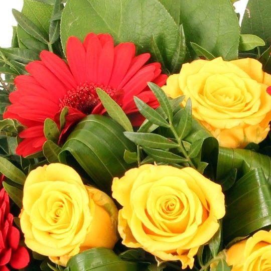 Blumen und Kuchen zum Geburtstag - Blumenfee Kathi Special gut und ...