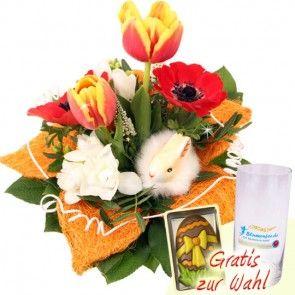 Blumenstrauß Stupsnase