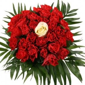 Blumenversand online - Rosen online verschicken mit Blumenfee - Rosen mit Rabatt