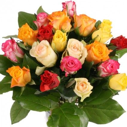 20 Bunte Rosen online bestellen und schnell und günstig versenden mit dem Blumenfee Rosenversand