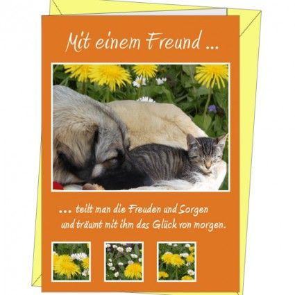 Doppelkarte mit Briefumschlag - Grußarte Freunde - Motiv 1