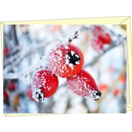 Hochwertige Grußkarte mit Wintermotiv als Ergänzung für Ihren Blumenstrauß online bestellen im Blumenversand Blumenfee www.blumenfee.de