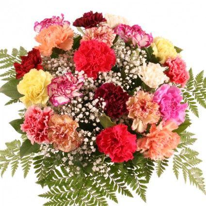 Blumen - Nelken online verschicken mit Blumenfee - dem Blumenversand - Anzahl und Farbe selbst wählen