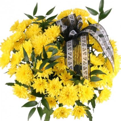 10 gelbe Chrsysanthemen mit Schleife