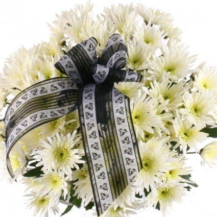 10 weiße Feder-Chrsysanthemen mit Schleife