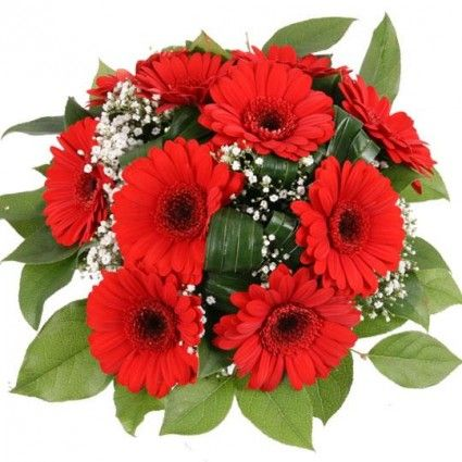 Blumenstrauß Roter Traum mit 3 Gratiszugaben Ihrer Wahl – Blumen online verschicken auf www.blumenfee.de