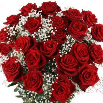 langstielige Rosen mit Rabatt - Sie wählen Farbe & Anzahl - Rosen online deutschlandweit versenden  mit www.blumenfee.de - dem Blumenversand