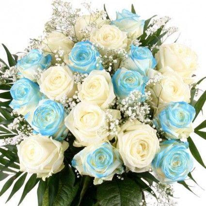 Blaue/weiße Rosen mit Rabatt  - blaue Rosen online bestellen und  verschicken/versenden mit www.blumenfee.de - dem Rosenversand/Blumenversand