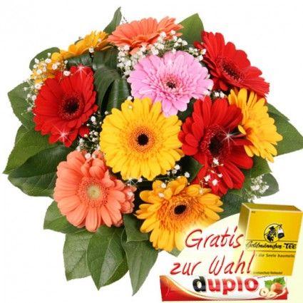 Der günstige Blumenstrauss - Bunter Gebera Strauss online bestellen und schnell und günstig versenden