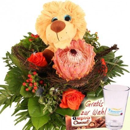 Protea Brabigera Blumenstrauß Kuschel Flower King Leon mit Gratis-Vase oder leckerer Schokolade online bestellen und versenden