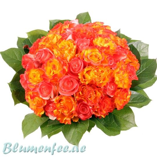Rosenzauber der feurige Rosenstrauß