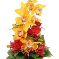 Orchidee - Für dich allein