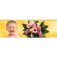 Kleine Prinzessin-Blumen zur Geburt