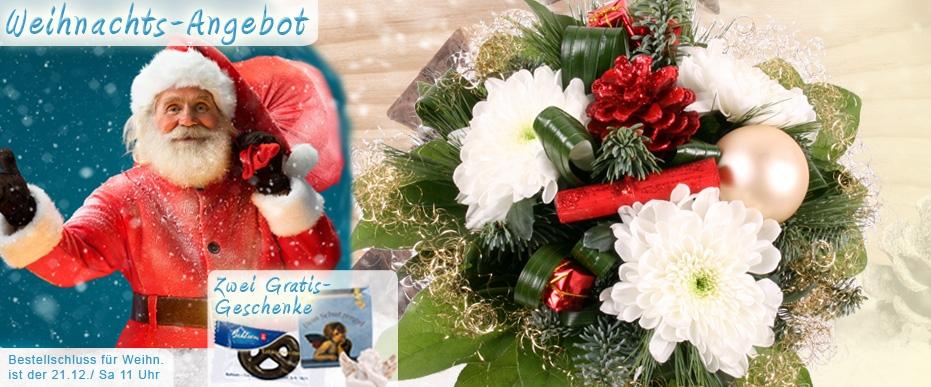 Blumen zu Weihnachten online gut und günstig versenden