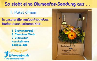 Blumenversand_Blumenfee_Karton_geoeffnet